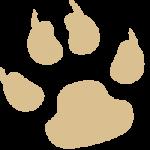 Immagine usata nell'esempio